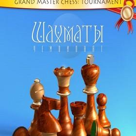 Шахматы (Турнир 2013)