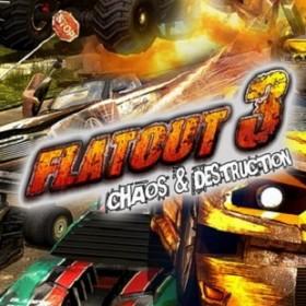 Флатаут 3